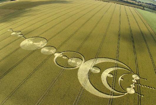 Fenomena Crop Circle Lingkar Tanaman Pola Unik