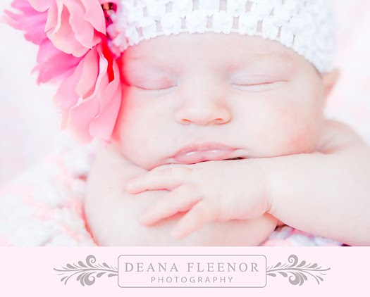Posted by Deana Fleenor Photography at 9:33 AM