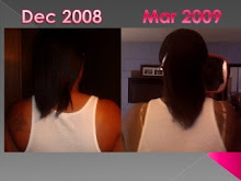 Dec 2008-March 2009 Progress Picture