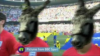 England World Cup team portrayed as donkeys