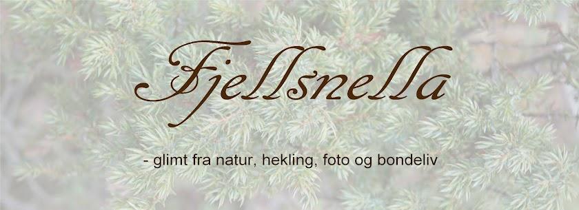Fjellsnella