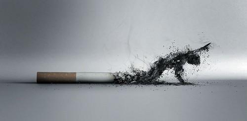 Rokok Yang Merugikan Kesehatan