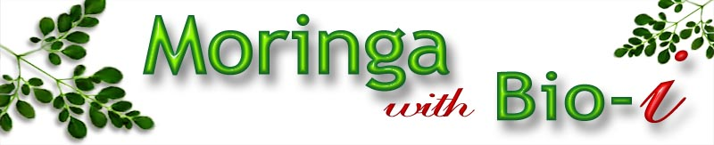 Moringa-Bio-I, Natural Health Remedy