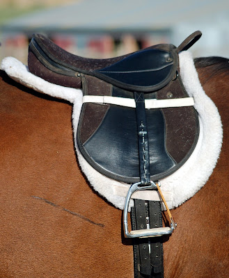 Leadline saddle with built in hand hold and peacock safety stirrups.