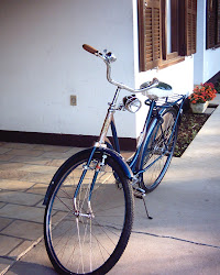 My Grandma's bicycle