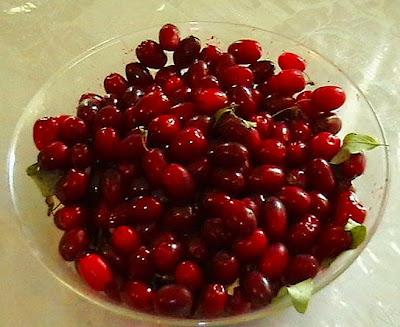 www.iransalamatzi.mihanblog.com