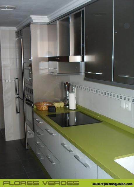 Fresquisima cocina Flores Verdes con muebles altos en aluminio ...