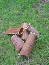 bark baskets