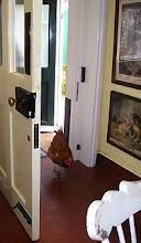 hen house?
