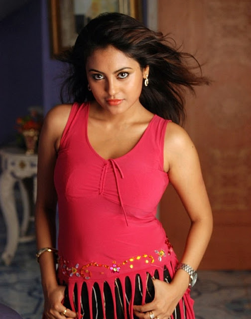 Meenakshi Sexy Stills from Telugu Movie Gang War hot photos
