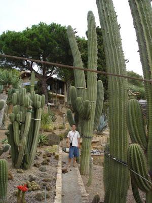 Jardines de cactus y suculentas cactarium costa brava for Vivero feroxcactus
