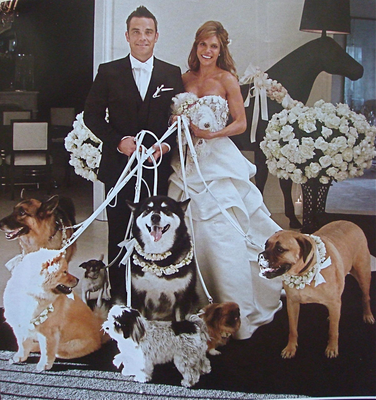 http://2.bp.blogspot.com/_WV0BsMcY10Y/THXODtEs0sI/AAAAAAAAHuQ/7vU7g0xUfM0/s1600/dogs.jpg