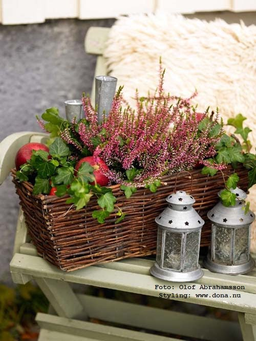 dona blogg november 2010