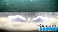 Angel Beats 11