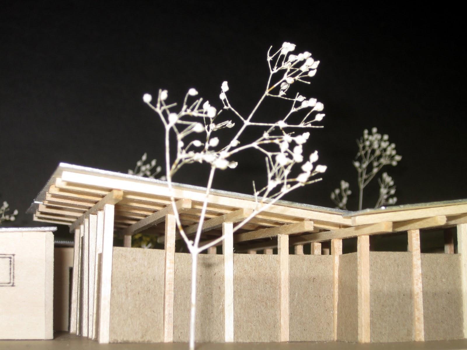 haiti agricultural institute housing model