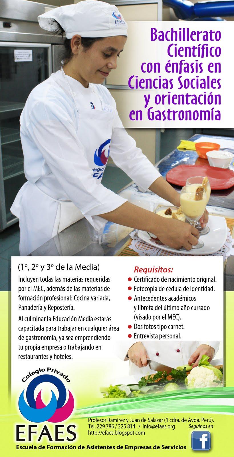 Escuela de hoteleria y gastronomia efaes educ media con - Curso de cocina profesional ...