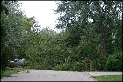Sept storm damage