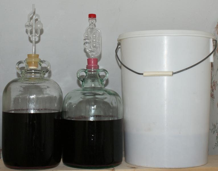 Wild plum wine recipes