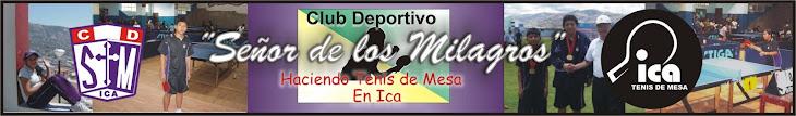 TENIS DE MESA - ICA