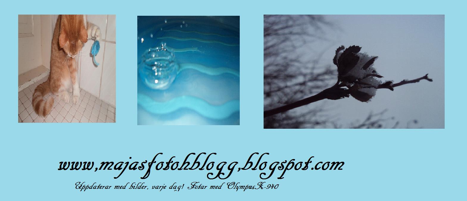 Majas fotoh blogg