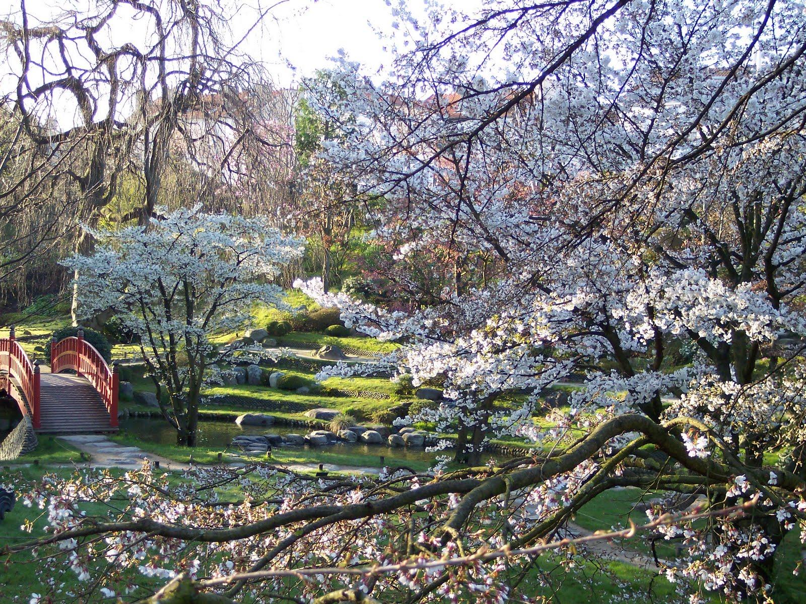 Revue jardins michel farris le jardinier d positaire du for Les jardins anglais