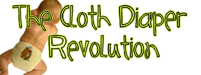 The Cloth Diaper Revolution