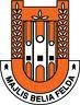 Logo MBFM