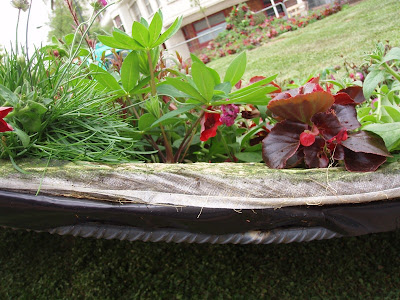 Concurso jardines bilbao