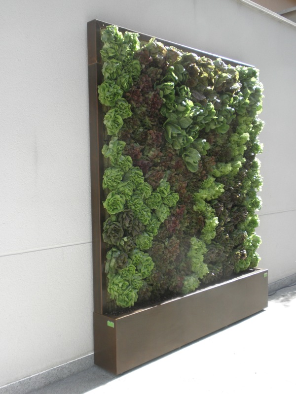 Los elementos de un jard n como crear un jardin vertical - Como hacer un jardin vertical de interior ...