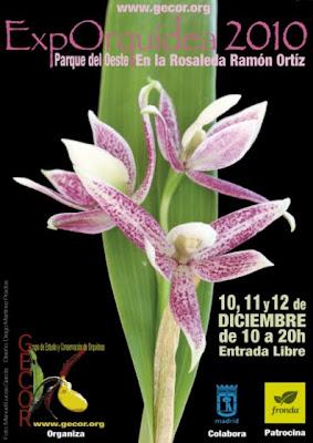 Exporquidea 2010