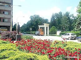 Kod gradskog parka