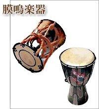膜鳴楽器(まくめいがっき)
