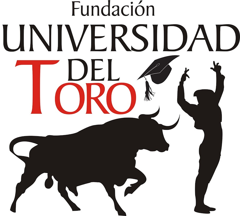 FUNDACIN UNIVERSIDAD DEL TORO