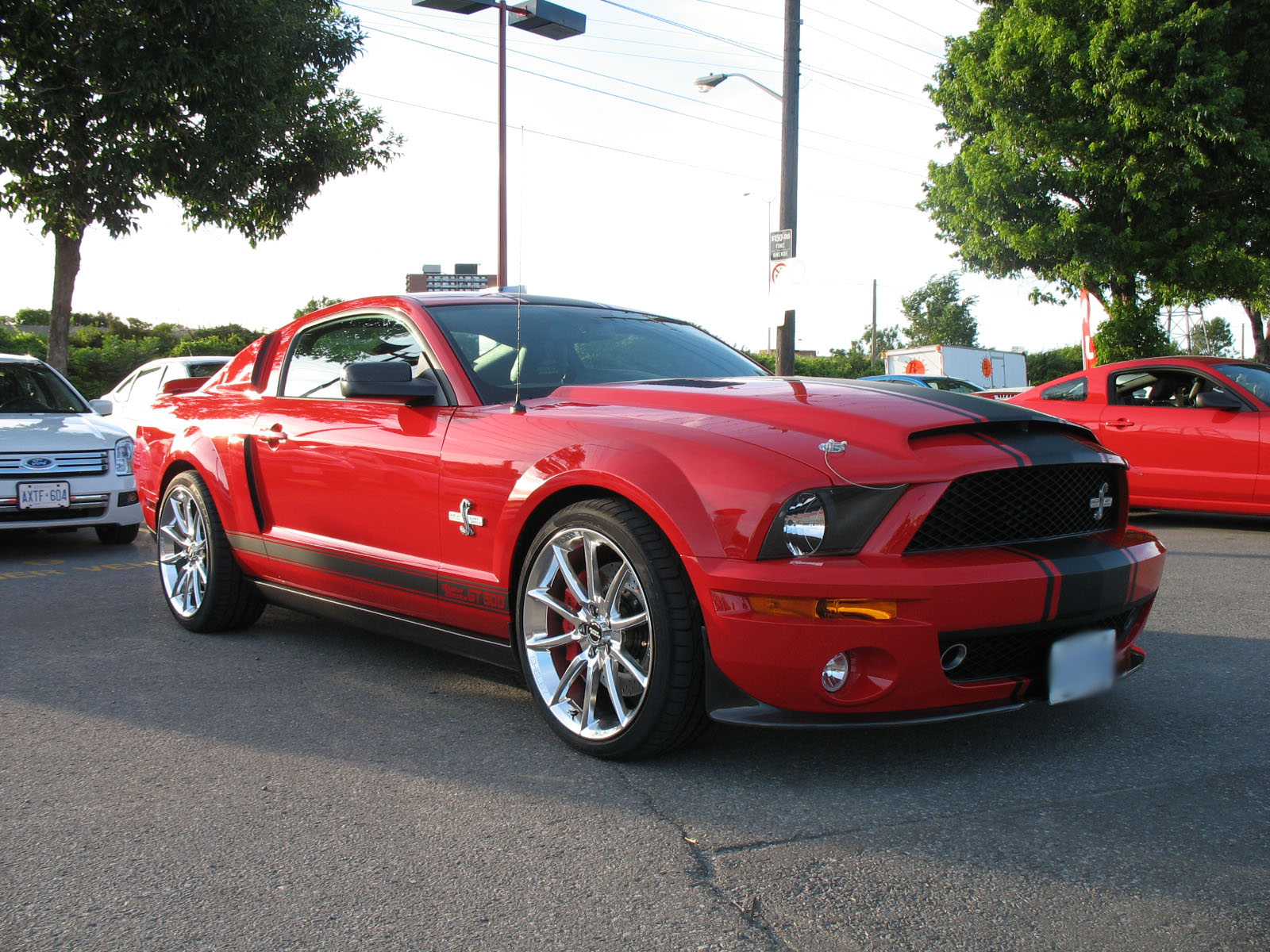 Mustang Shelby GT500 Super Snake for Sale