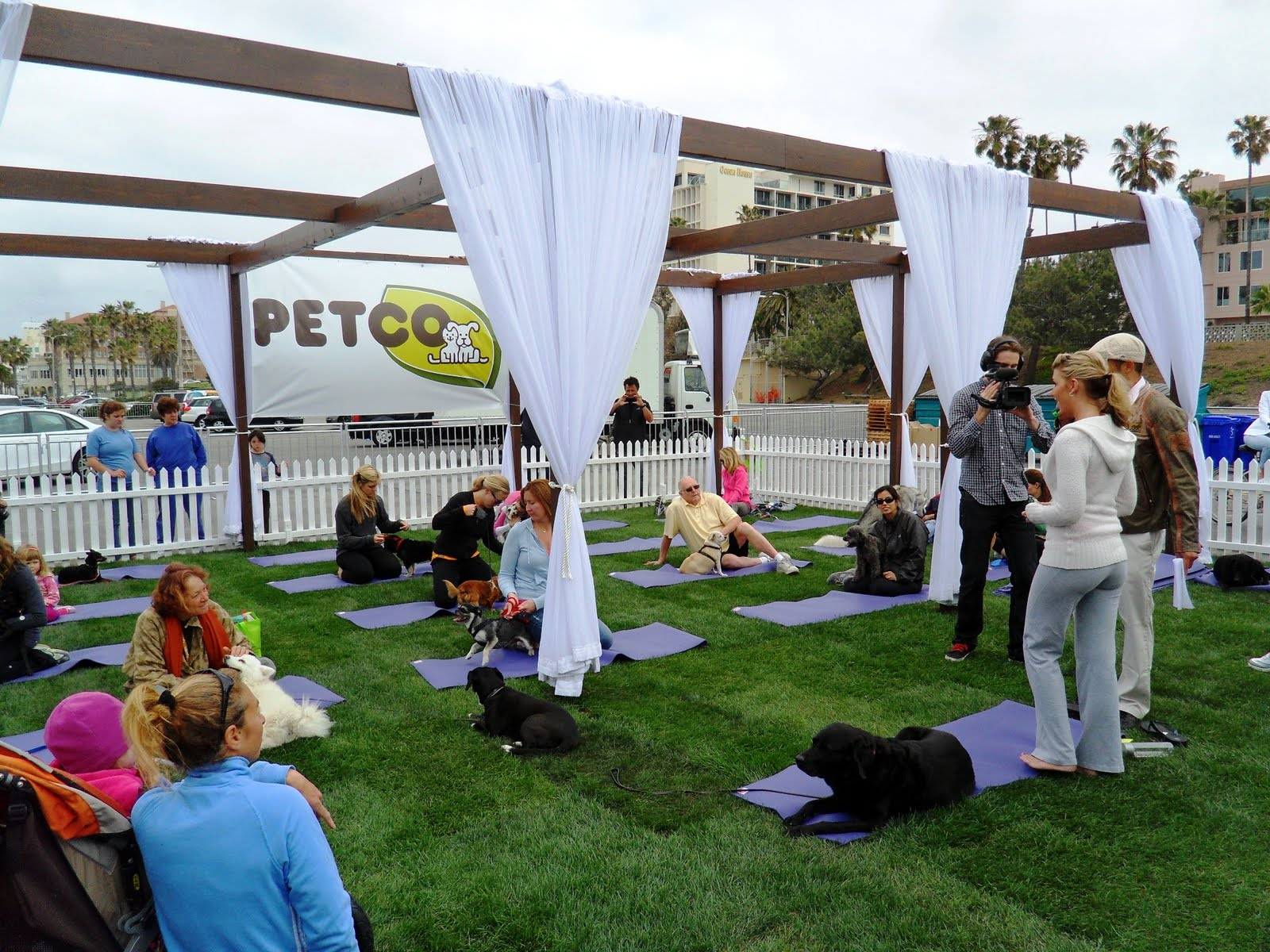 petco natural neighborhood festival santa monica natural balance dog yoga set 3D Gay Art   Exclusive collection of 3D gay pictures!