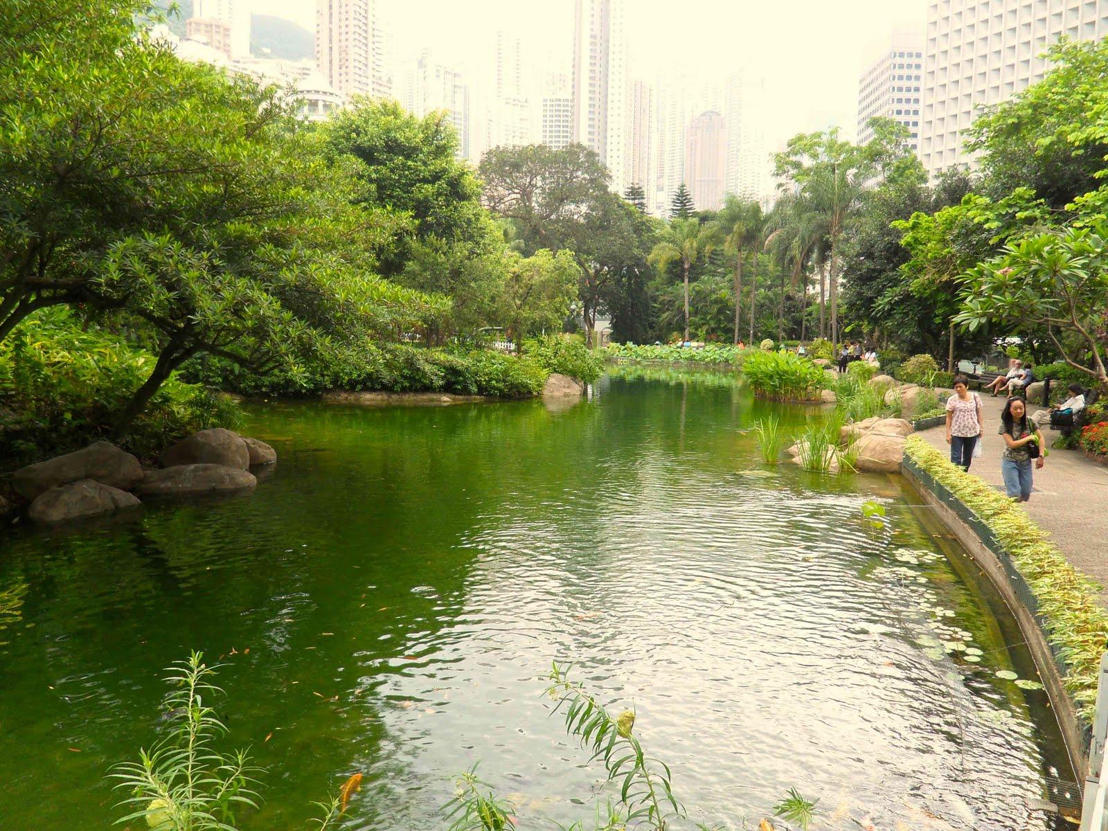 http://2.bp.blogspot.com/_WnCJlq_kUA8/TEXG5qcAs1I/AAAAAAAAXC0/bNI7u90aH3U/s1600/Hong-Kong-Park-pond.jpg