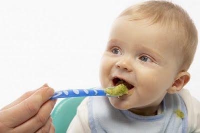 alimentacion bebe
