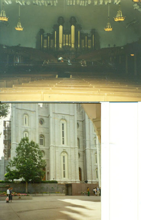 Steve took me to SALT LAKE...the TEMPLE in person...the TABERNACLE (so different from TV viewing of