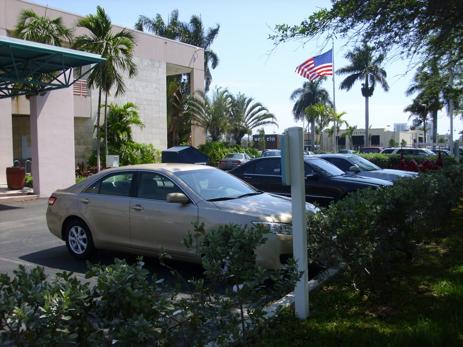 Hallandale Beach Blog  Comm  Dotty Ross hiding in plain sight at