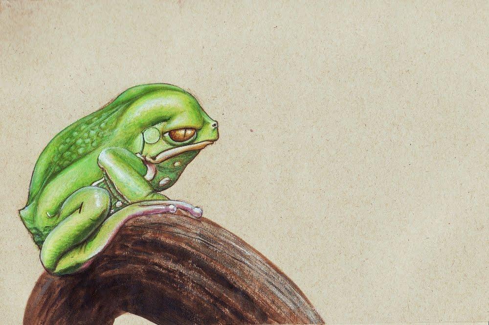 Andrea Gerstmann Art: Waxy Tree Frog