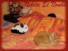 Nikita et Nouka