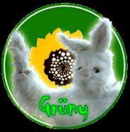 Bienvenue à Gruny ..sur Second Life