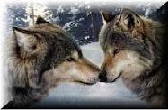 Premio lobos