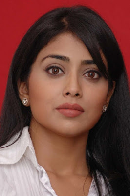 Shriya Saran Poses for Photocall during Kutty Press Meet