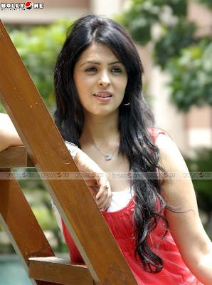 Anjana Sukhani Next Bolly Sizzler hotpics