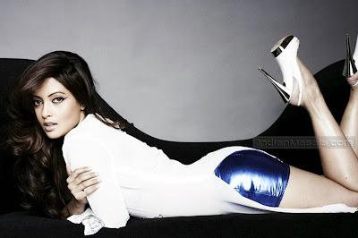 Riya Sen Sizzling Hot Photoshoot