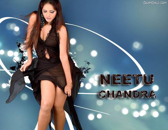 http://2.bp.blogspot.com/_WsVqlxUH5Z4/TDnb4KX6FpI/AAAAAAAAFO4/viwViHuJNUc/s1600/neetu_chandra_1.jpg