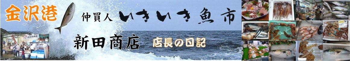 鮮魚~朝とれ~金沢~直送~仲買人~かになど