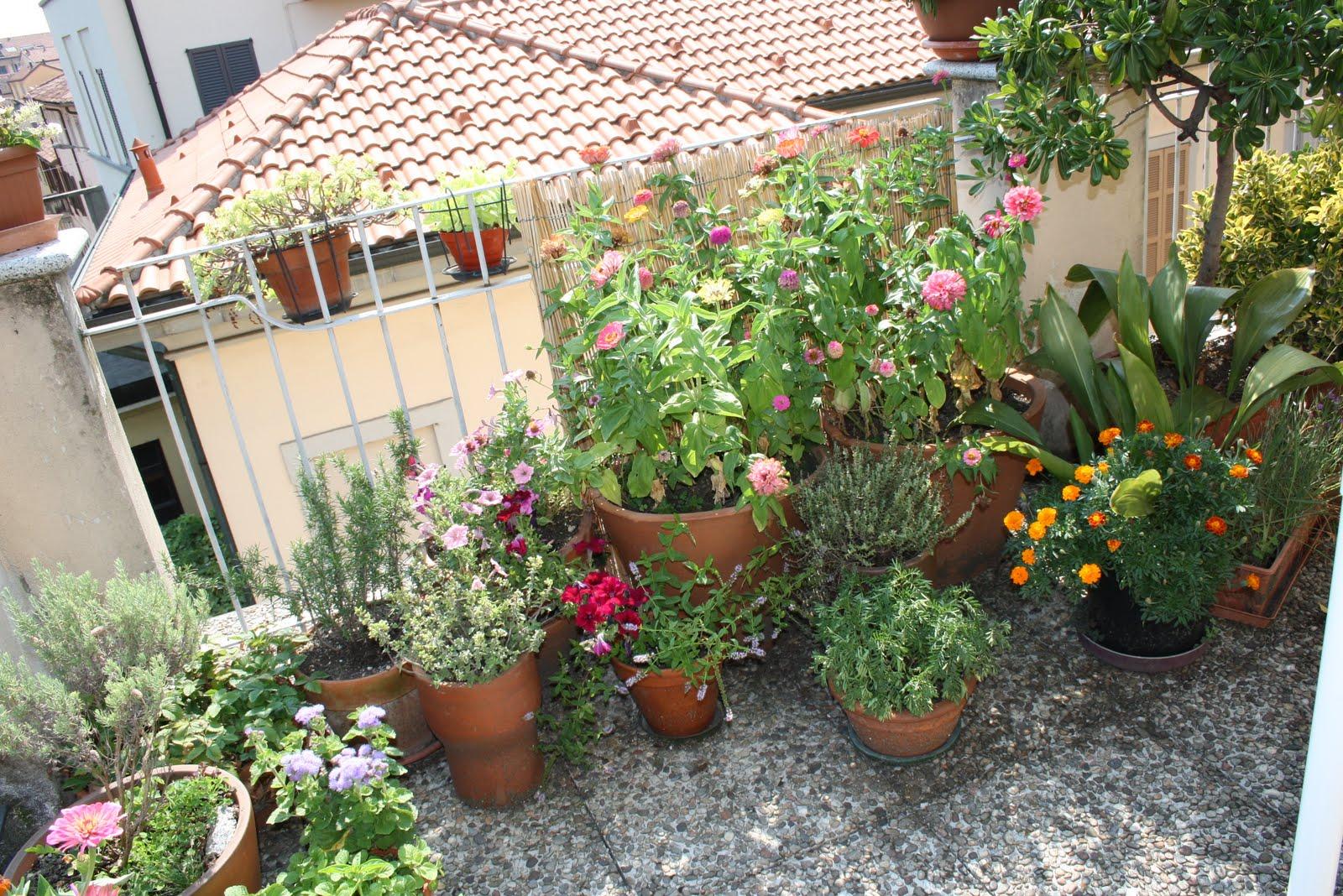 terrazzi fioriti