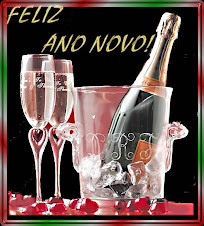 Feliz Ano Novo para todos os MEUS VISITANTES E TURISTAS
